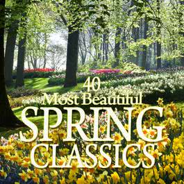 40 Most Beautiful Spring Classics 2011 純音樂