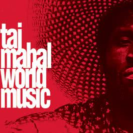 World Music 1993 Taj Mahal