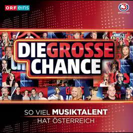 Die grosse Chance 2011 Various Artists