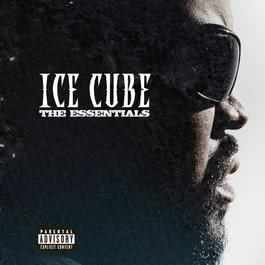 The Essentials 2008 Ice Cube