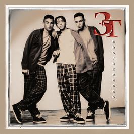 Brotherhood 1995 3T(歐美)