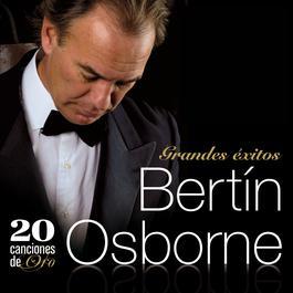 Como Un Vagabundo 2007 Bertin Osborne