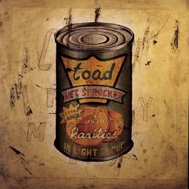 In Light Syrup 1995 Toad The Wet Sprocket