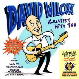 Greatest Hits Too 1997 David Wilcox