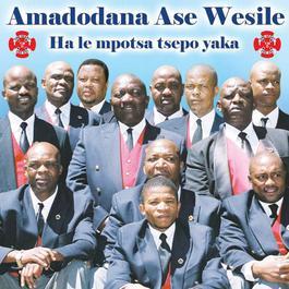 Hale Mpotsa Tsepo Yaka 2008 Amadodana Ase Wesile