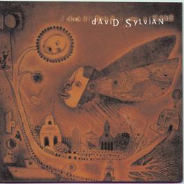 Dead Bees On A Cake 1999 David Sylvian