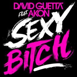 Sexy Bitch 2009 David Guetta