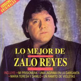 Lo Mejor De 2006 ZaloReyes
