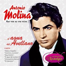 Esa Voz Es Una Mina... El Agua Del Avellano 2006 Antonio Molina