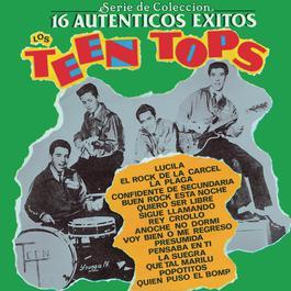 Serie De Colección 16 Autenticos Exitos 1991 Los Teen Tops
