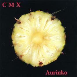 Aurinko 1992 CMX / KOTITEOLLISUUS FEAT. 51 KOODIA