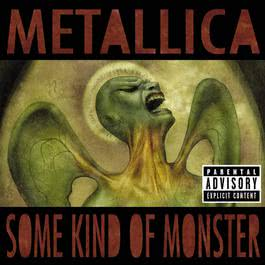 Some Kind Of Monster 2008 Metallica
