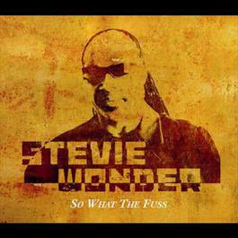 So What The Fuss 2005 Stevie Wonder