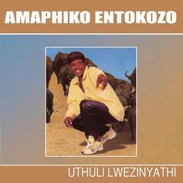 Uthuli Lwezinyathi 2009 Amaphiko Entokozo