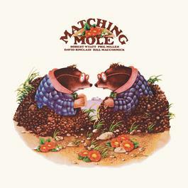 Matching Mole 2012 Matching Mole
