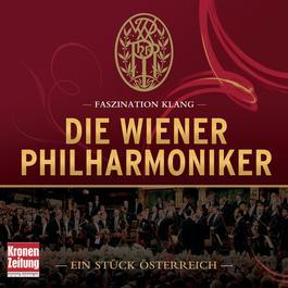 Faszination Klang - Die Wiener Philharmoniker 2011 Chopin----[replace by 16381]