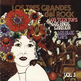 Los Tres Grandes Del Rock Vol. 3 1995 Various Artists