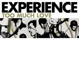 Too Much Love 2004 Experience