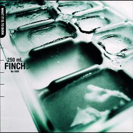 What It Is To Burn 2002 Finch