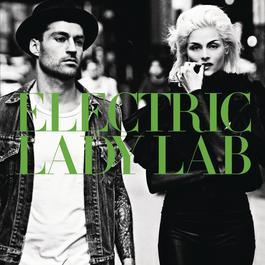 Flash! 2011 Electric Lady Lab