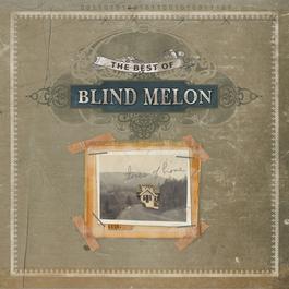 Best Of Blind Melon 2005 Blind Melon