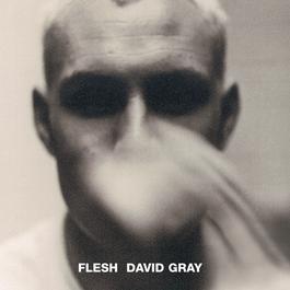 Flesh 1994 David Gray