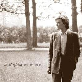 Brilliant Trees 2003 David Sylvian