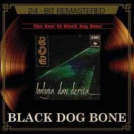 The Best Of BDB 2003 Black Dog Bone