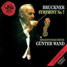 Bruckner - Symphony No. 7 1993 Gunter Wand