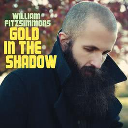 Gold In the Shadow 2017 William Fitzsimmons