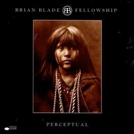 Perceptual 2000 Brian Blade
