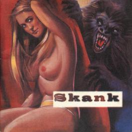 O Samba Poconé 1996 Skank