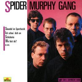 Mir San A Bayrische Band 2003 Spider Murphy Gang