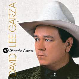 10 Grandes Exitos 2012 David Lee Garza