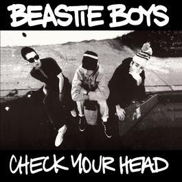 Check Your Head 2009 Beastie Boys