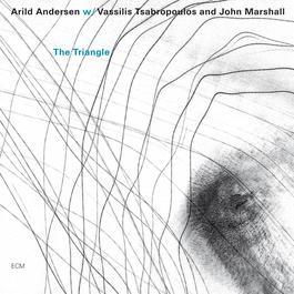 The Triangle 2004 Arild Andersen