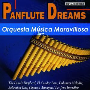 收聽Orquesta Música Maravillosa的Wenn Der Tag Erwacht歌詞歌曲