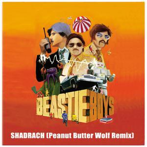Shadrach 2004 Beastie Boys
