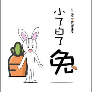陳皮皮的專輯小了白了兔