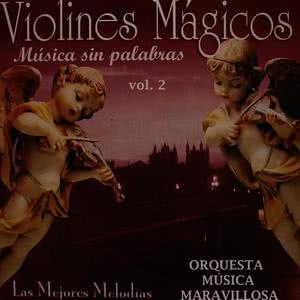 收聽Orquesta Música Maravillosa的Tiernamente歌詞歌曲