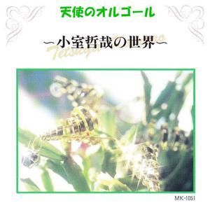 Angel's Music Box的專輯Tetsuya Komuro World