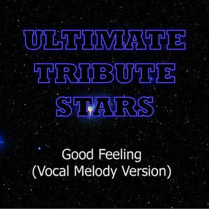 Ultimate Tribute Stars的專輯Flo Rida - Good Feeling (Vocal Melody Version)