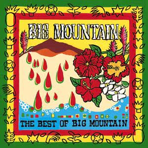The Best Of Big Mountain 2008 Big Mountain