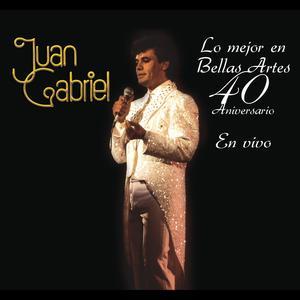 收聽Juan Gabriel的Abuso (En Vivo [Desde el Instituto Nacional de Bellas Artes])歌詞歌曲