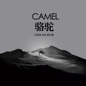 薛之謙的專輯駱駝