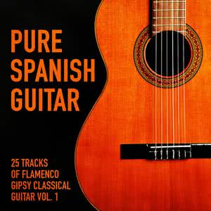 The Spanish Guitar的專輯Pure Spanish Guitar, Vol. 1 (25 Tracks of Flamenco Gipsy Classical Guitar)