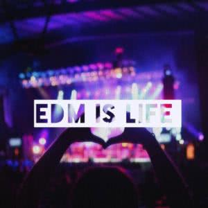 Electronic Dance Hits