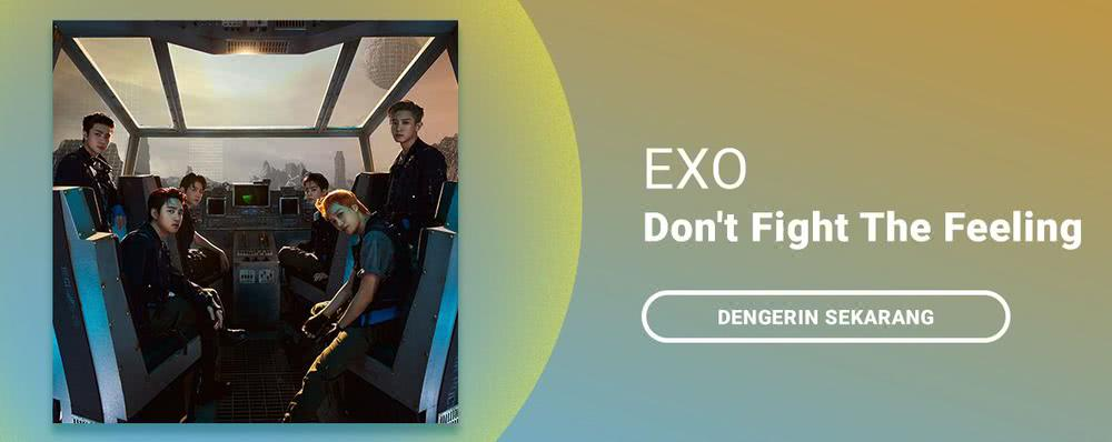 EXO - Don't Fight The Feeling