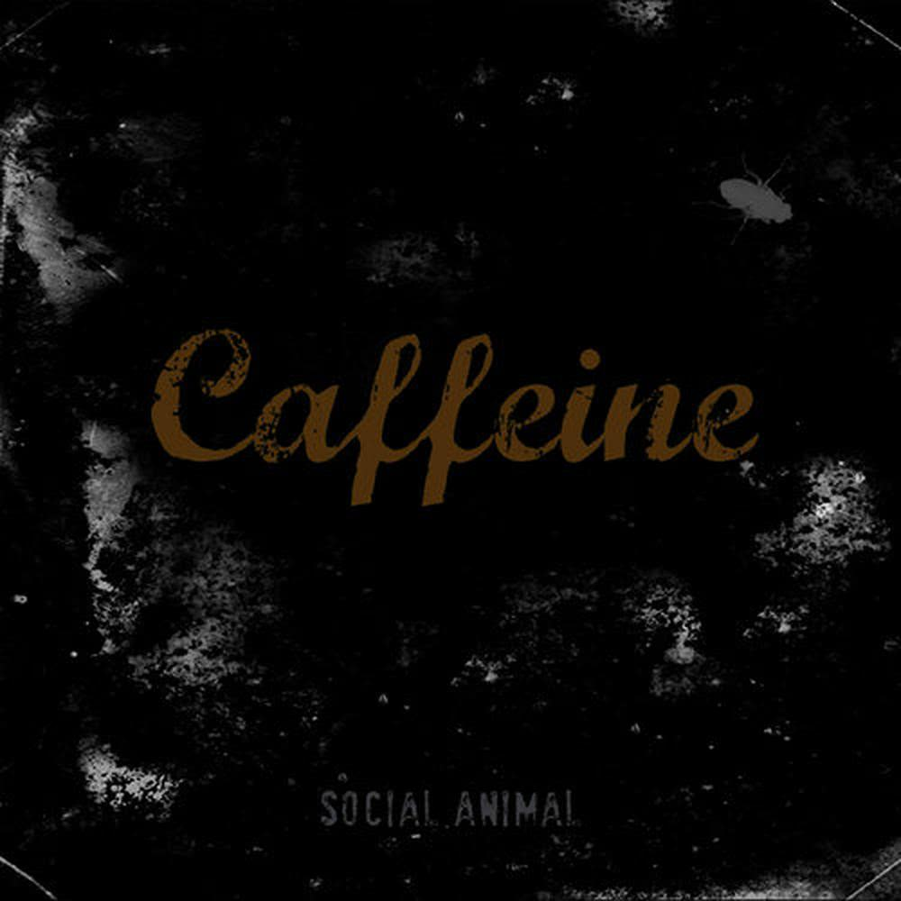 Somewhere 2015 CAFFEINE