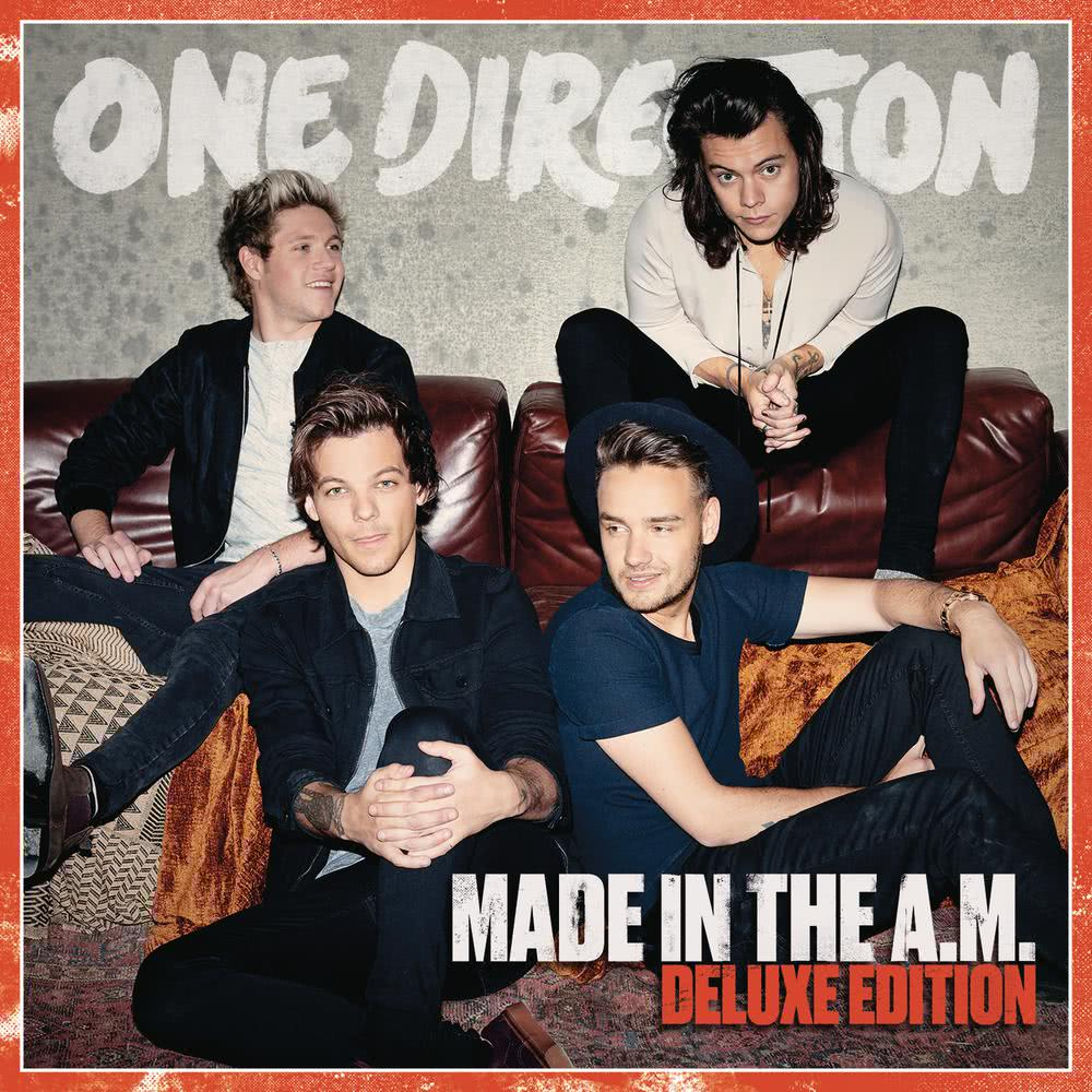 History 2015 One Direction